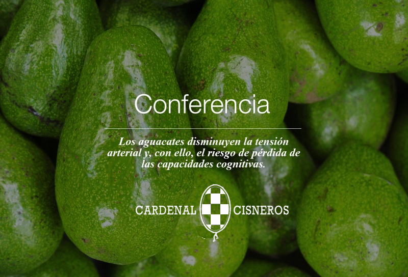 Conferencia Plenaria